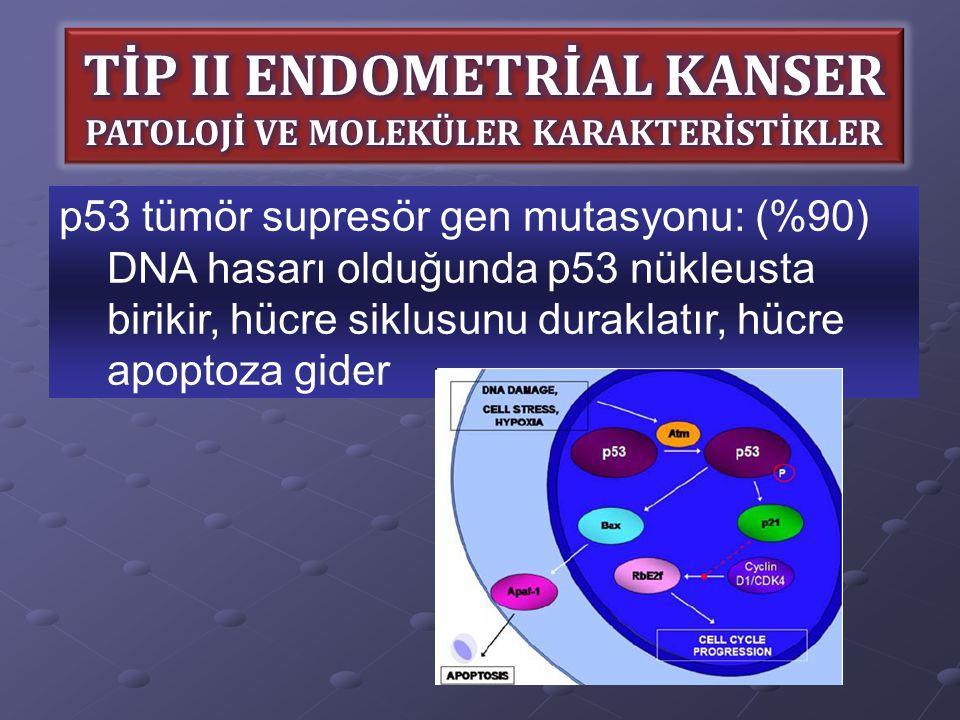 p53 tümör supresör gen mutasyonu: (%90) DNA hasarı olduğunda p53 nükleusta birikir, hücre siklusunu duraklatır, hücre apoptoza gider