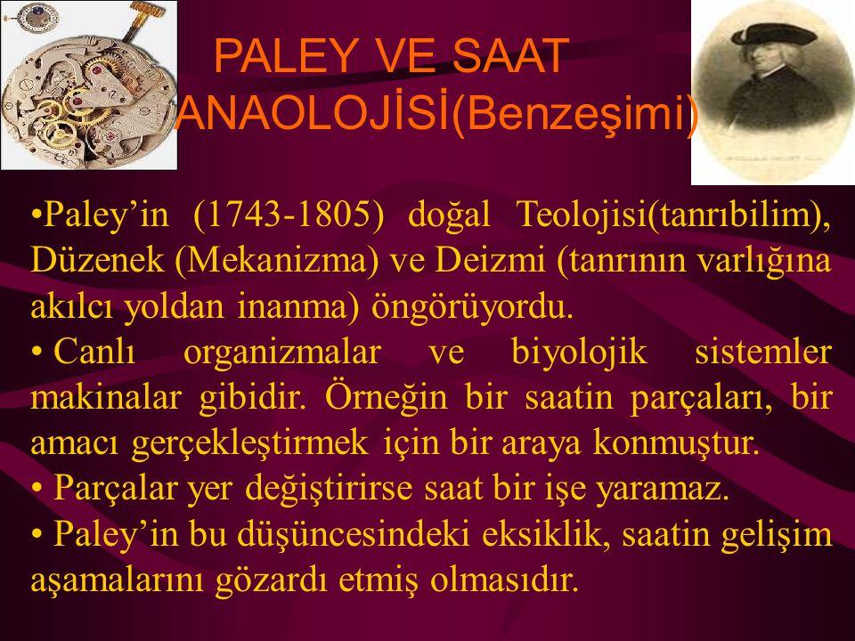 PALEY VE SAAT ANAOLOJİSİ(Benzeşimi) Paley'in (1743-1805) doğal Teolojisi(tanrıbilim), Düzenek (Mekanizma) ve Deizmi (tanrının varlığına akılcı yoldan inanma) öngörüyordu.