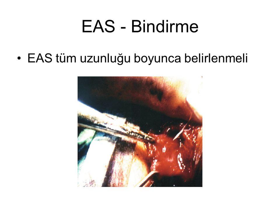 EAS - Bindirme EAS tüm uzunluğu boyunca belirlenmeli