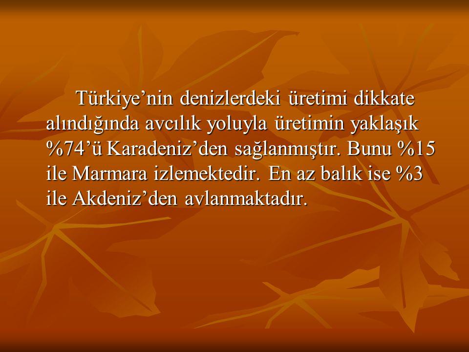 Türkiye'nin denizlerdeki üretimi dikkate alındığında avcılık yoluyla üretimin yaklaşık %74'ü Karadeniz'den sağlanmıştır. Bunu %15 ile Marmara izlemekt