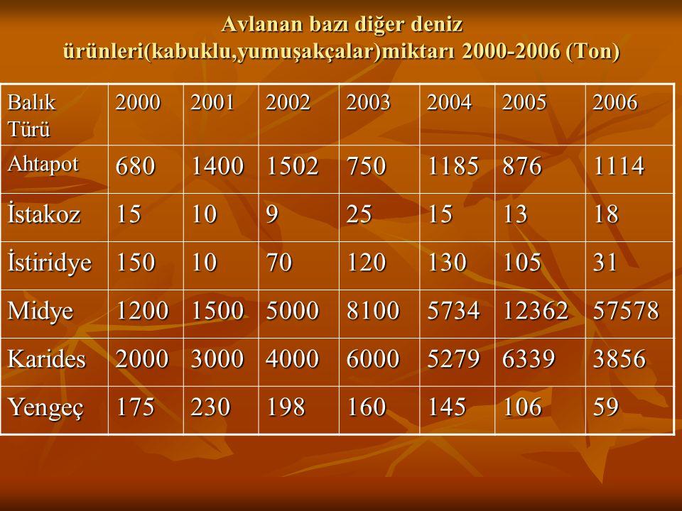 Avlanan bazı diğer deniz ürünleri(kabuklu,yumuşakçalar)miktarı 2000-2006 (Ton) Balık Türü 2000200120022003200420052006 Ahtapot680140015027501185876111