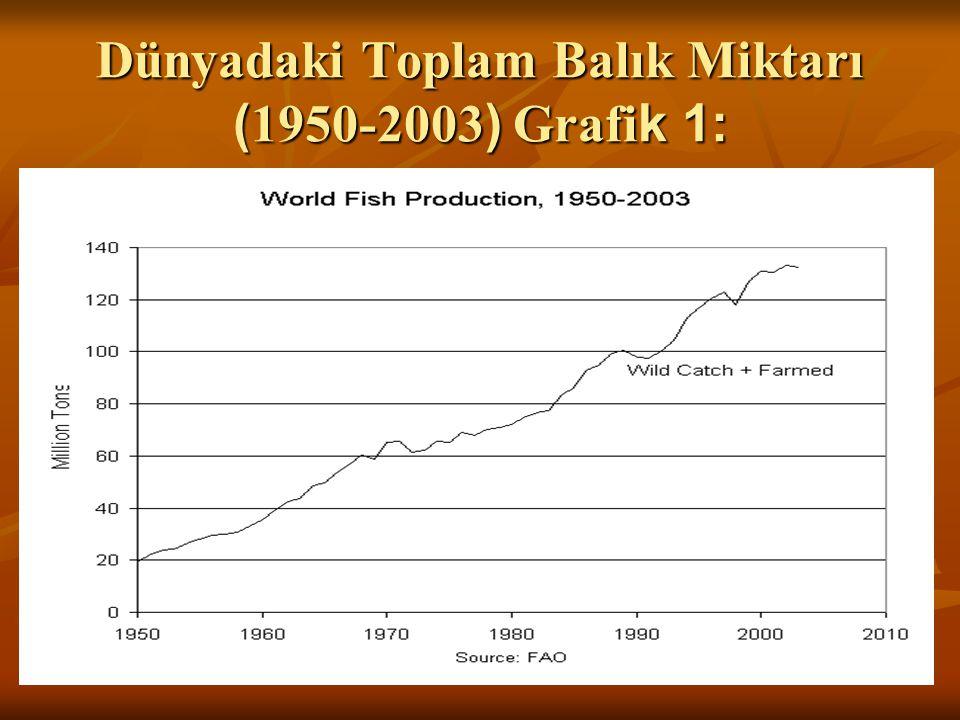 Dünyadaki Toplam Balık Miktarı ( 1950-2003 ) Grafi k 1: