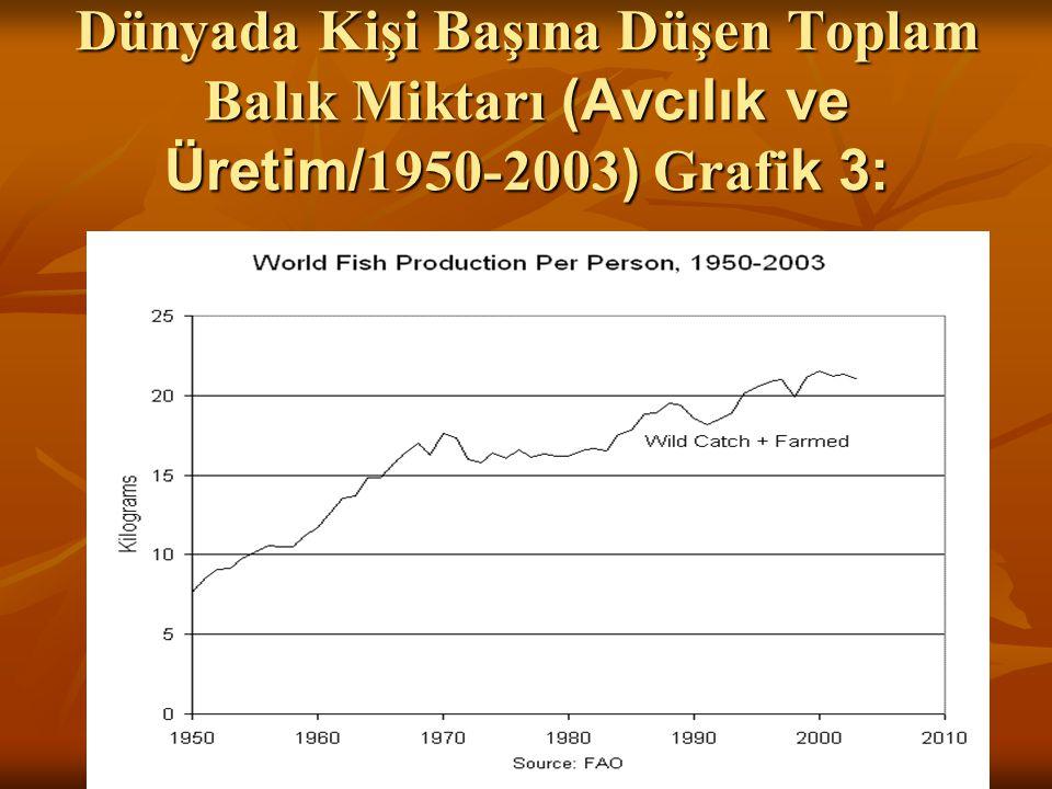Dünyada Kişi Başına Düşen Toplam Balık Miktarı (Avcılık ve Üretim/ 1950-2003 ) Grafi k 3: