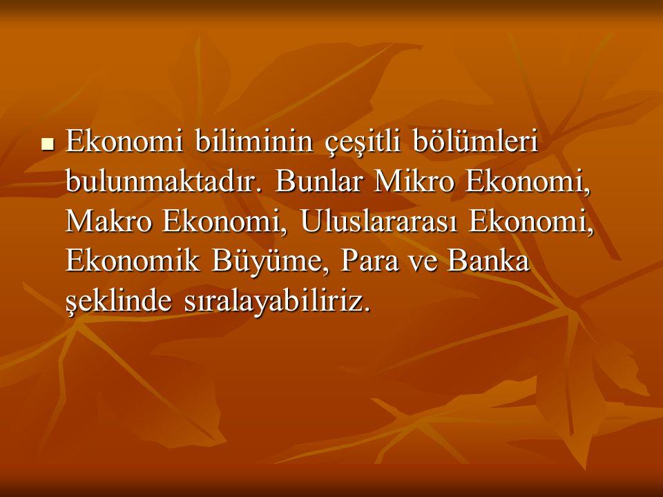 Ekonomi biliminin çeşitli bölümleri bulunmaktadır. Bunlar Mikro Ekonomi, Makro Ekonomi, Uluslararası Ekonomi, Ekonomik Büyüme, Para ve Banka şeklinde