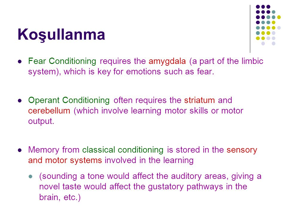 Koşullanma Fear Conditioning requires the amygdala (a part of the limbic system), which is key for emotions such as fear. Operant Conditioning often r