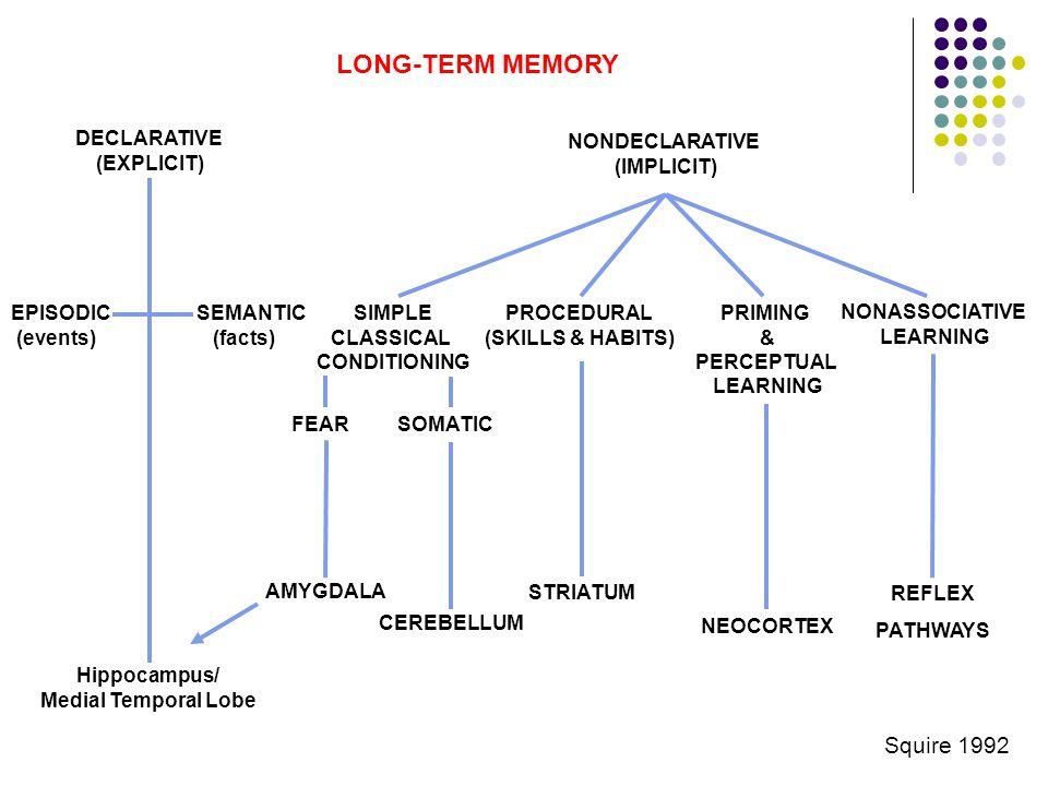 LONG-TERM MEMORY DECLARATIVE (EXPLICIT) SEMANTIC (facts) EPISODIC (events) Hippocampus/ Medial Temporal Lobe NONDECLARATIVE (IMPLICIT) PROCEDURAL (SKI