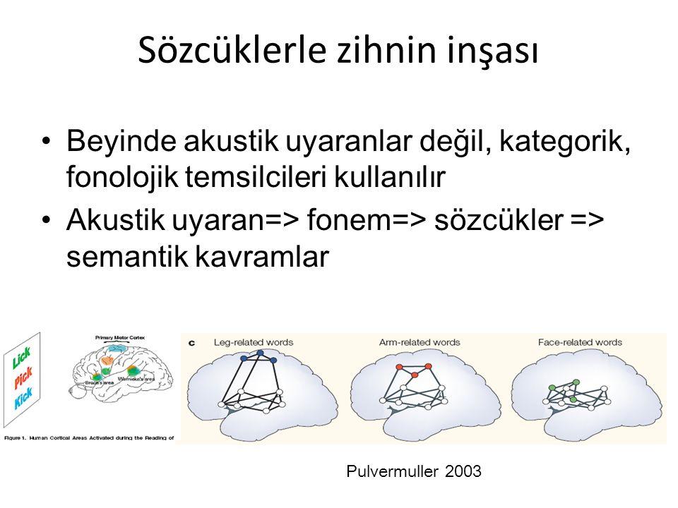 Sözcüklerle zihnin inşası Beyinde akustik uyaranlar değil, kategorik, fonolojik temsilcileri kullanılır Akustik uyaran=> fonem=> sözcükler => semantik