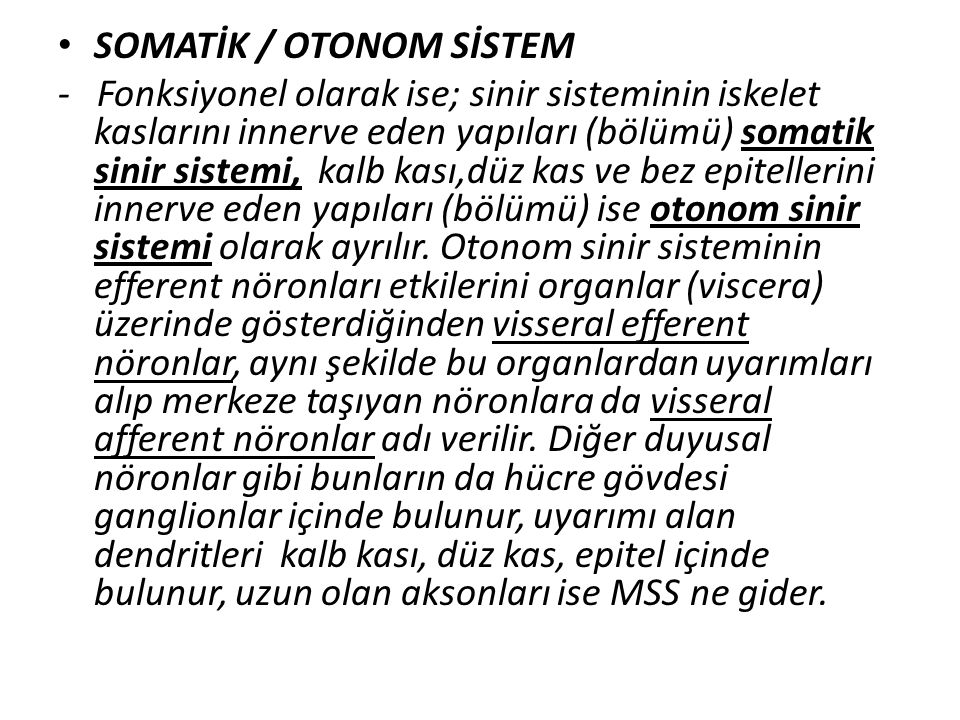 SOMATİK / OTONOM SİSTEM - Fonksiyonel olarak ise; sinir sisteminin iskelet kaslarını innerve eden yapıları (bölümü) somatik sinir sistemi, kalb kası,d