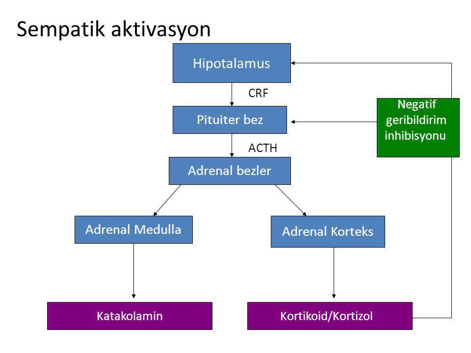 Sempatik aktivasyon Hipotalamus Pituiter bez Adrenal bezler Adrenal Medulla Adrenal Korteks KatakolaminKortikoid/Kortizol ACTH CRF Negatif geribildirim inhibisyonu