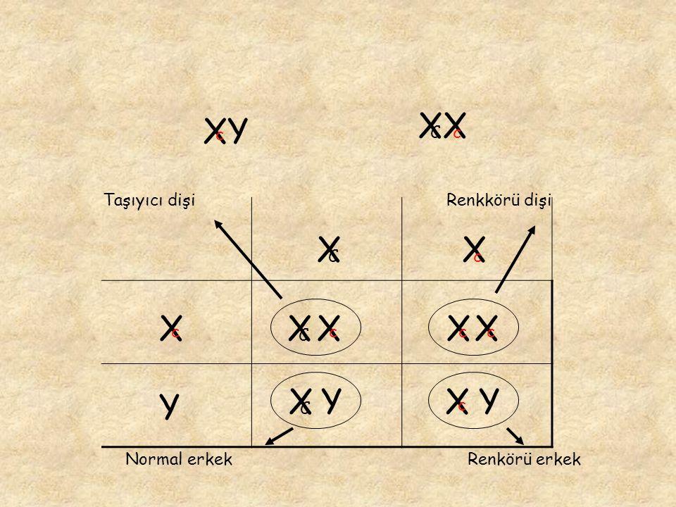XX Cc XY c Y X c X c X C X c X C X c X c X c X C Y Y Taşıyıcı dişiRenkkörü dişi Normal erkekRenkörü erkek