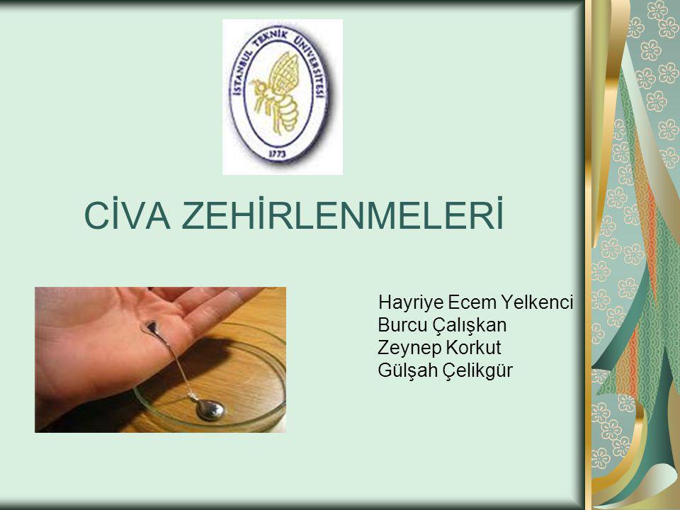 Dava: Sarayönü civa işletmesinde izabehane bölümünde çalışan işçiler Şikayetleri: Nefes darlığı Unutkanlık Ağzıda metalik tat Ellerde titreme
