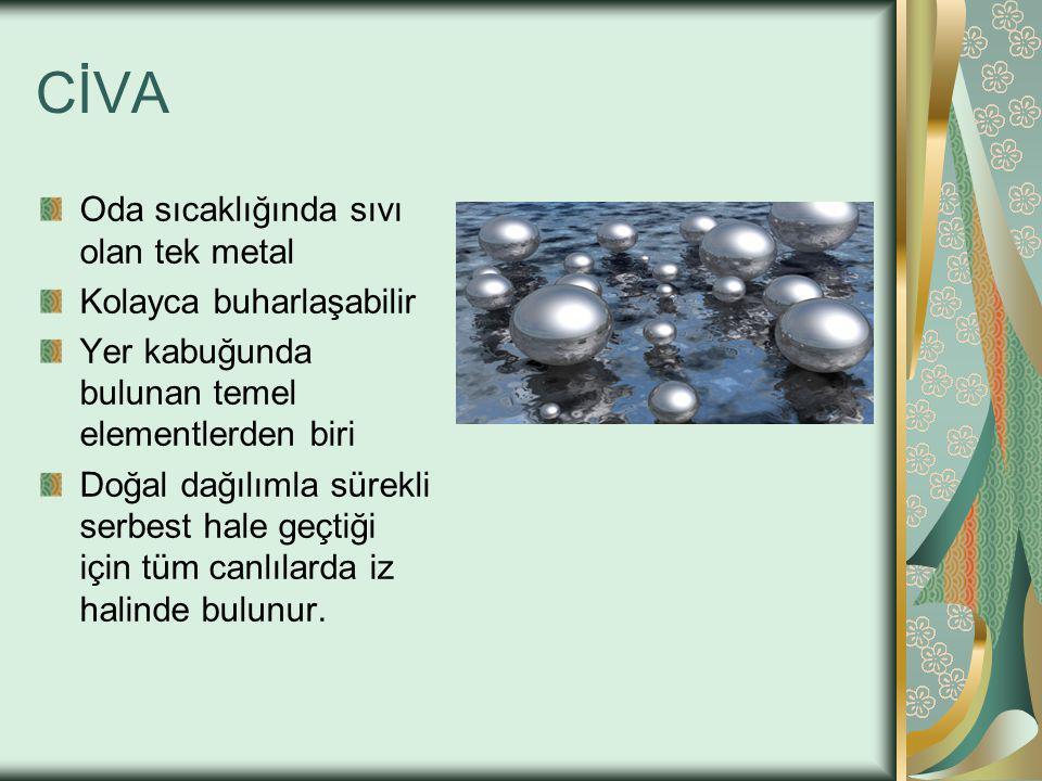CİVA Oda sıcaklığında sıvı olan tek metal Kolayca buharlaşabilir Yer kabuğunda bulunan temel elementlerden biri Doğal dağılımla sürekli serbest hale geçtiği için tüm canlılarda iz halinde bulunur.