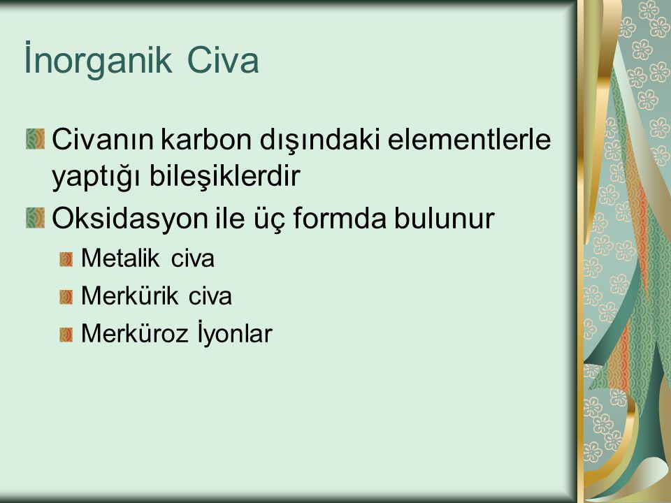 İnorganik Civa Civanın karbon dışındaki elementlerle yaptığı bileşiklerdir Oksidasyon ile üç formda bulunur Metalik civa Merkürik civa Merküroz İyonlar
