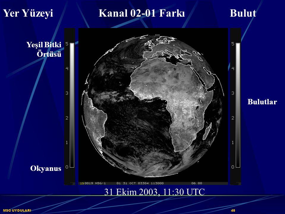 MSG UYDULARI45 Yer Yüzeyi Kanal 02-01 Farkı Bulut 31 Ekim 2003, 11:30 UTC Yeşil Bitki Örtüsü Okyanus Bulutlar