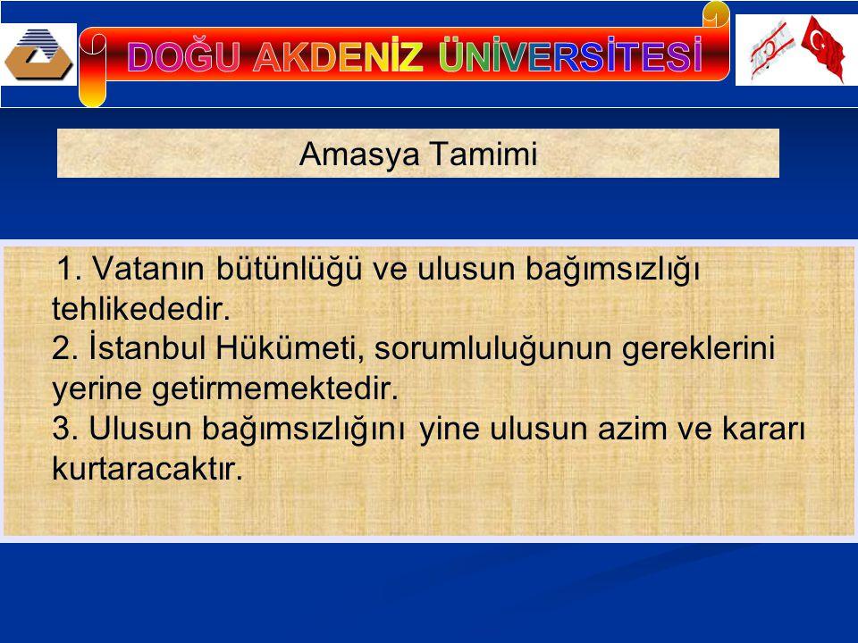 1. Vatanın bütünlüğü ve ulusun bağımsızlığı tehlikededir. 2. İstanbul Hükümeti, sorumluluğunun gereklerini yerine getirmemektedir. 3. Ulusun bağımsızl