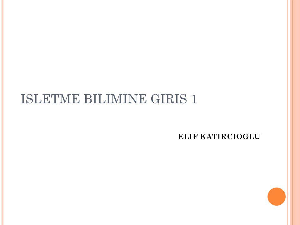 ELIF KATIRCIOGLU ISLETME BILIMINE GIRIS 1