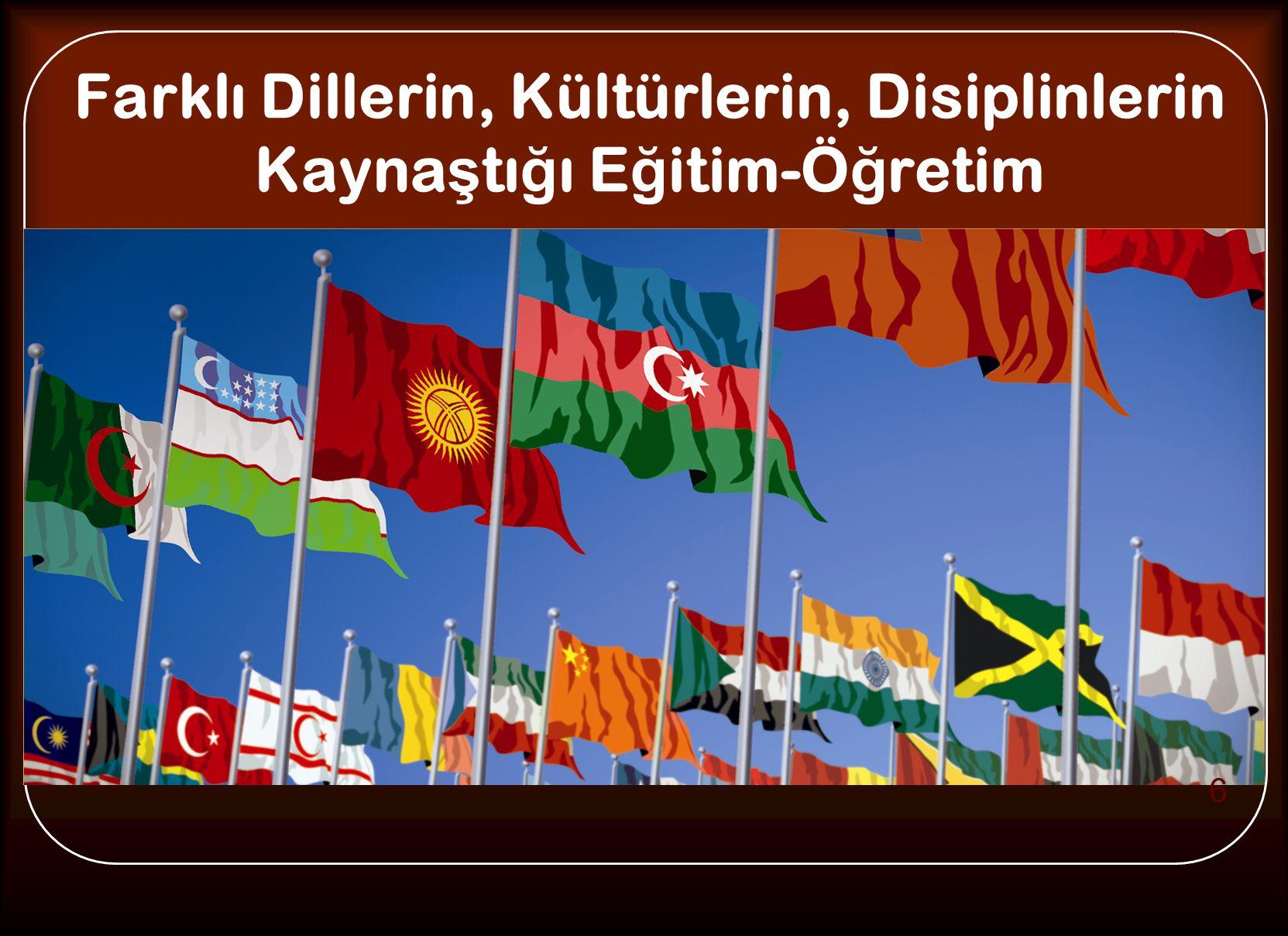 Farklı Dillerin, Kültürlerin, Disiplinlerin Kayna ş tı ğ ı E ğ itim-Ö ğ retim 6