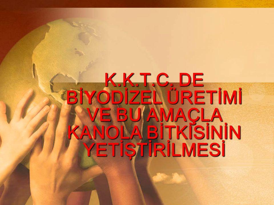 K.K.T.C. DE Bİ Y ODİZEL ÜRETİMİ VE BU AMAÇLA KANOLA BİTKİSİNİN YETİŞTİRİLMESİ