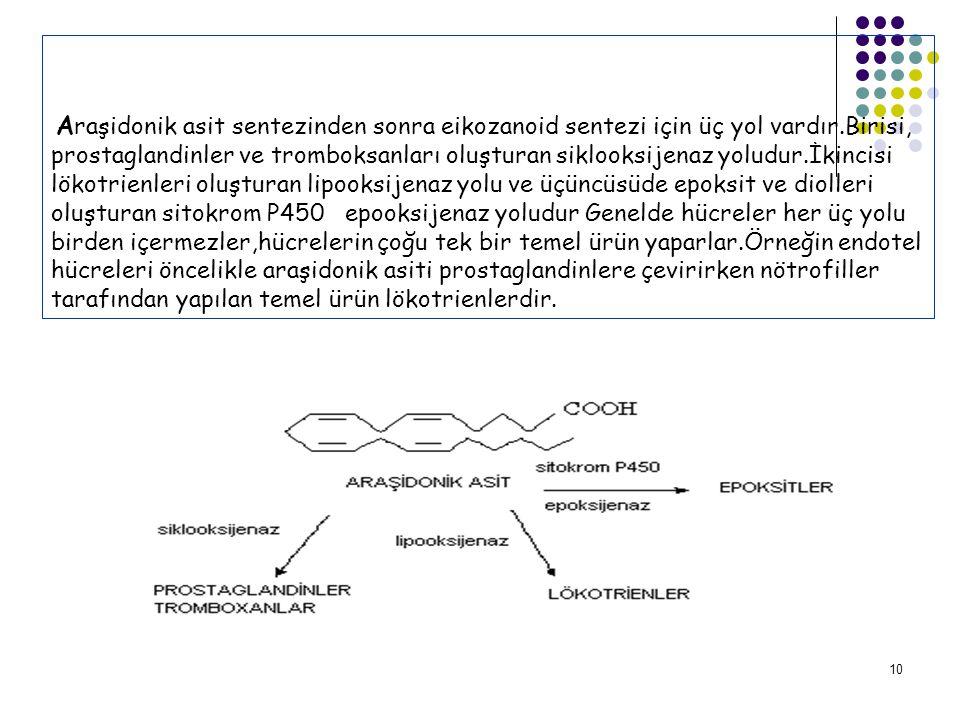 10 A raşidonik asit sentezinden sonra eikozanoid sentezi için üç yol vardır.Birisi, prostaglandinler ve tromboksanları oluşturan siklooksijenaz yoludur.İkincisi lökotrienleri oluşturan lipooksijenaz yolu ve üçüncüsüde epoksit ve diolleri oluşturan sitokrom P450 epooksijenaz yoludur Genelde hücreler her üç yolu birden içermezler,hücrelerin çoğu tek bir temel ürün yaparlar.Örneğin endotel hücreleri öncelikle araşidonik asiti prostaglandinlere çevirirken nötrofiller tarafından yapılan temel ürün lökotrienlerdir.
