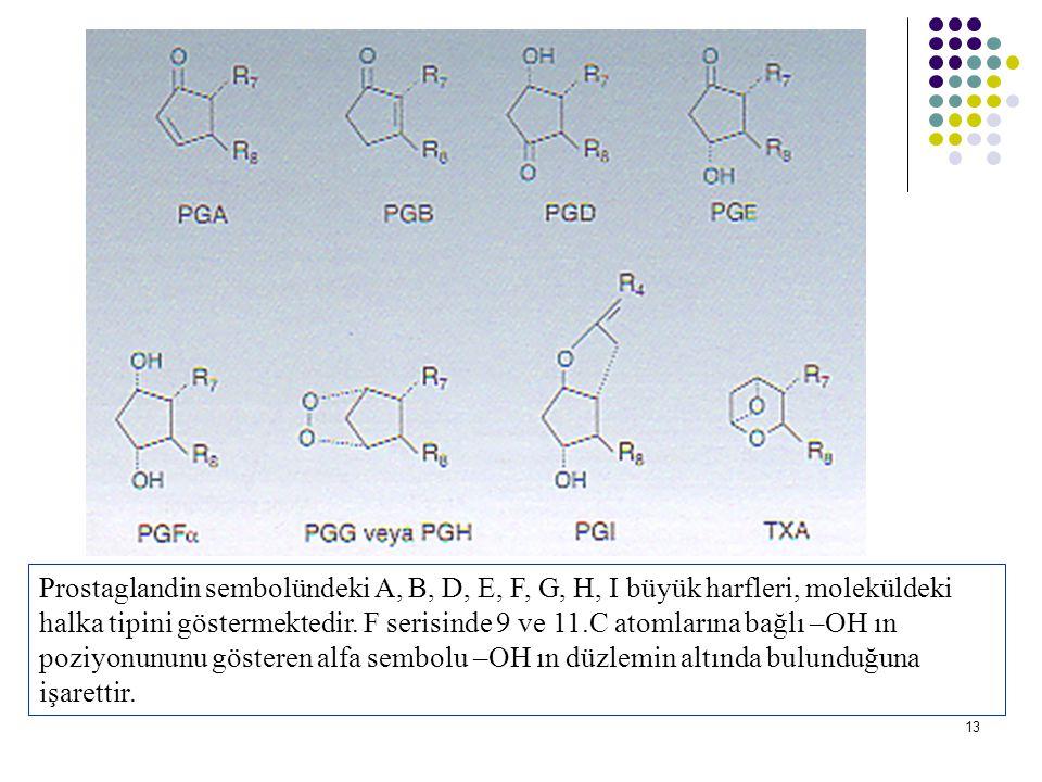 13 Prostaglandin sembolündeki A, B, D, E, F, G, H, I büyük harfleri, moleküldeki halka tipini göstermektedir.