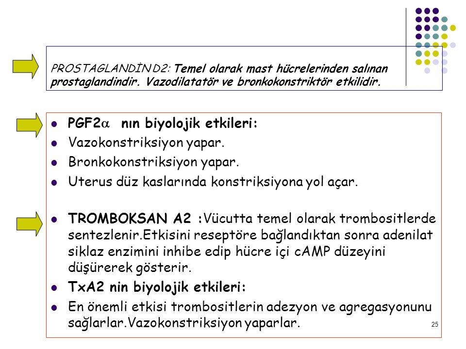 25 PROSTAGLANDİN D2: Temel olarak mast hücrelerinden salınan prostaglandindir.