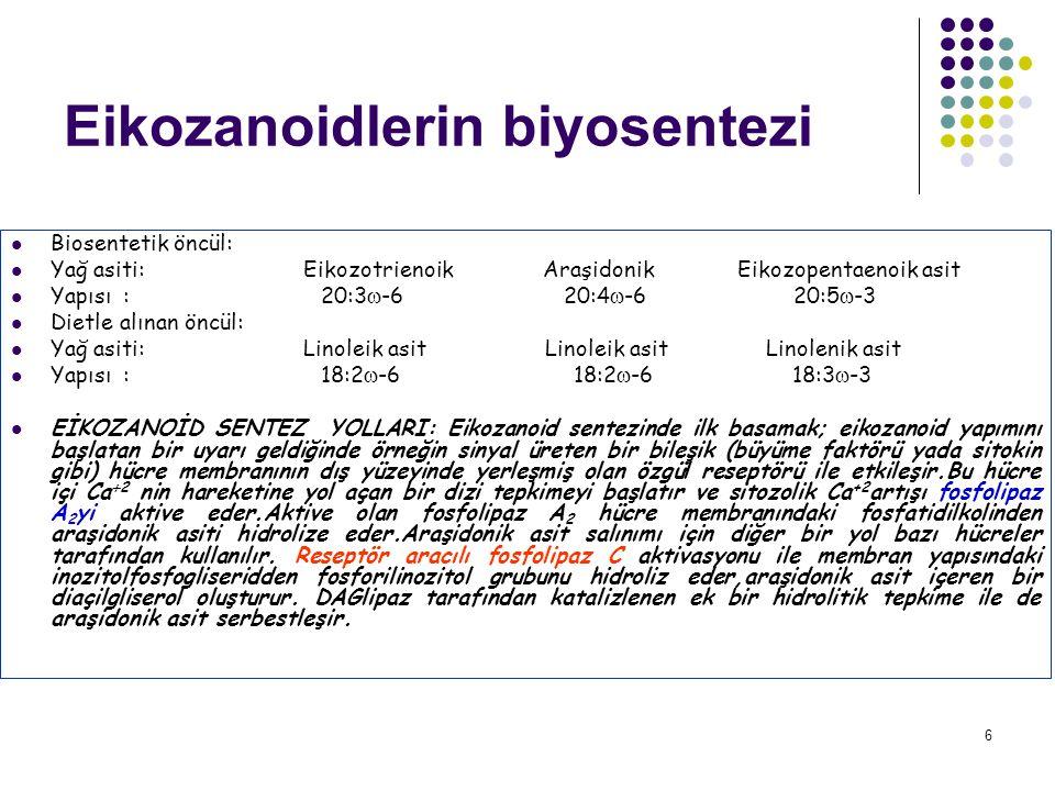 6 Eikozanoidlerin biyosentezi Biosentetik öncül: Yağ asiti: Eikozotrienoik Araşidonik Eikozopentaenoik asit Yapısı : 20:3  -6 20:4  -6 20:5  -3 Dietle alınan öncül: Yağ asiti: Linoleik asit Linoleik asit Linolenik asit Yapısı : 18:2  -6 18:2  -6 18:3  -3 EİKOZANOİD SENTEZ YOLLARI: Eikozanoid sentezinde ilk basamak; eikozanoid yapımını başlatan bir uyarı geldiğinde örneğin sinyal üreten bir bileşik (büyüme faktörü yada sitokin gibi) hücre membranının dış yüzeyinde yerleşmiş olan özgül reseptörü ile etkileşir.Bu hücre içi Ca  2 nin hareketine yol açan bir dizi tepkimeyi başlatır ve sitozolik Ca +2 artışı fosfolipaz A 2 yi aktive eder.Aktive olan fosfolipaz A 2 hücre membranındaki fosfatidilkolinden araşidonik asiti hidrolize eder.Araşidonik asit salınımı için diğer bir yol bazı hücreler tarafından kullanılır.