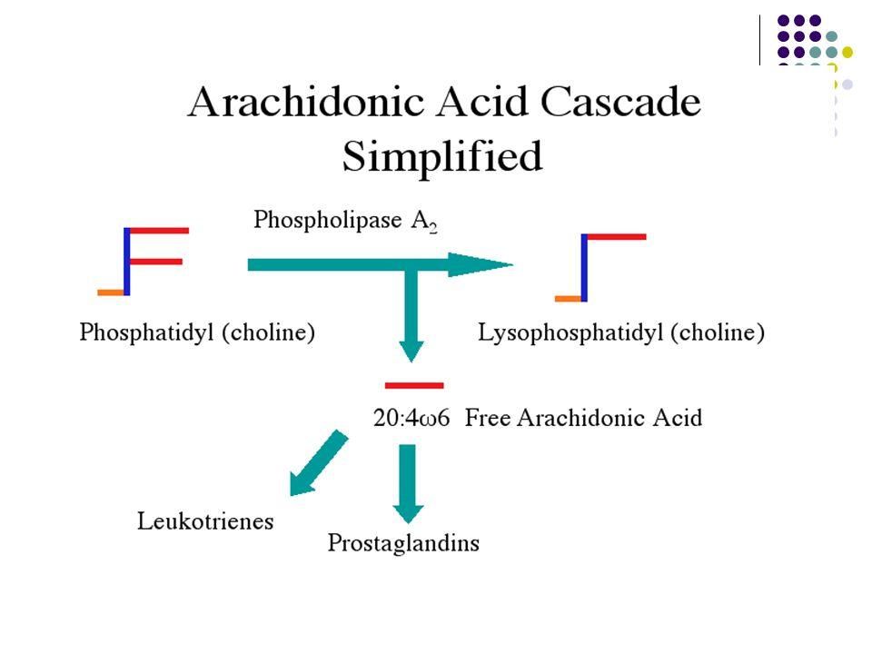 38 Sitokrom P 450 epoksijenaz yolu Sitokrom P 450 epoksijenaz yolunda araşidonik asitten oluşan ana ürünler epoksitlerdir (EET).