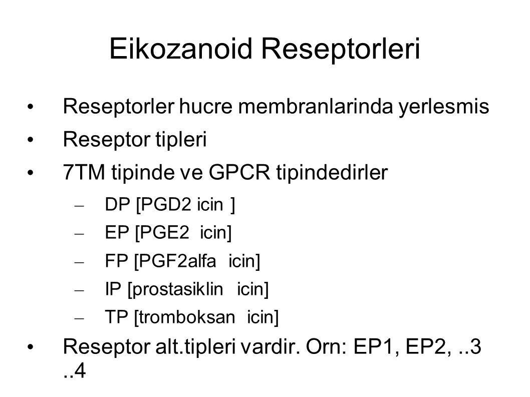 Eikozanoid Reseptorleri Reseptorler hucre membranlarinda yerlesmis Reseptor tipleri 7TM tipinde ve GPCR tipindedirler – DP [PGD2 icin ] – EP [PGE2 icin] – FP [PGF2alfa icin] – IP [prostasiklin icin] – TP [tromboksan icin] Reseptor alt.tipleri vardir.