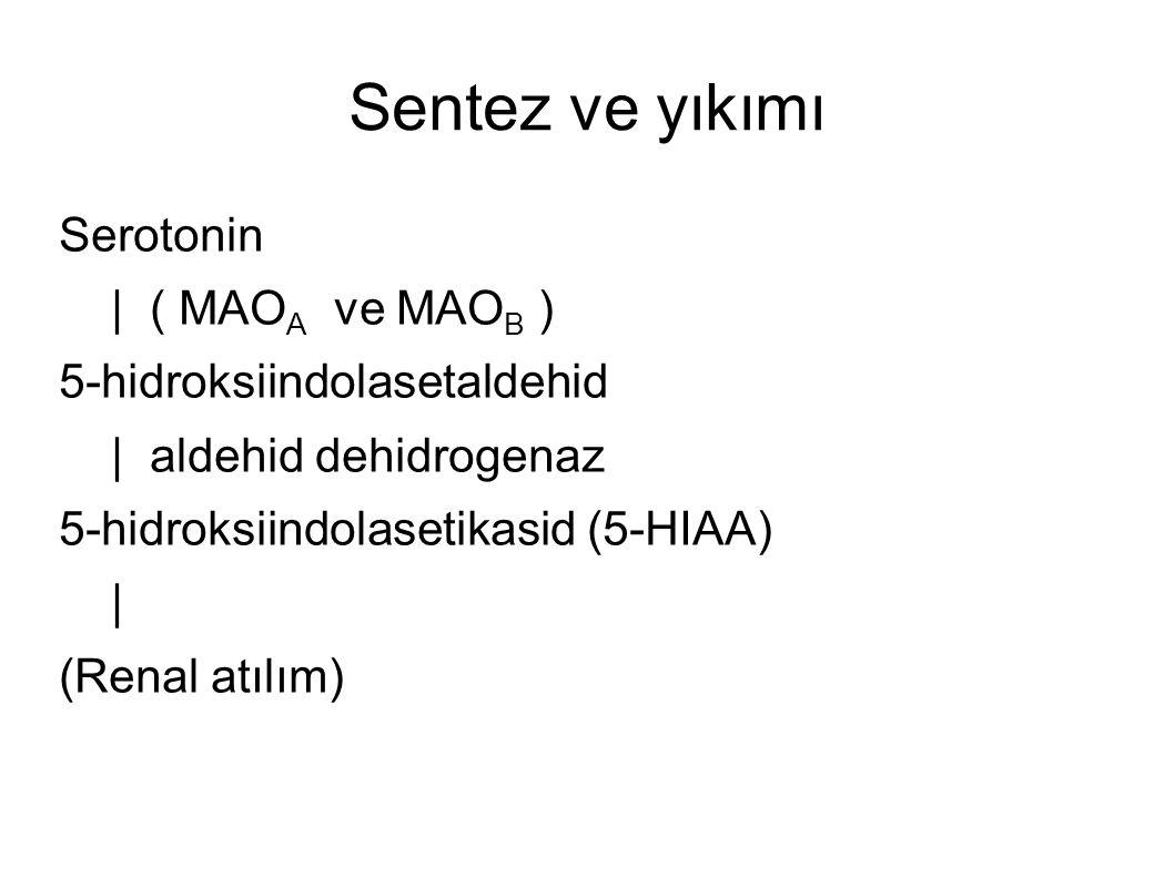 Sentez ve yıkımı Serotonin | ( MAO A ve MAO B ) 5-hidroksiindolasetaldehid | aldehid dehidrogenaz 5-hidroksiindolasetikasid (5-HIAA) | (Renal atılım)