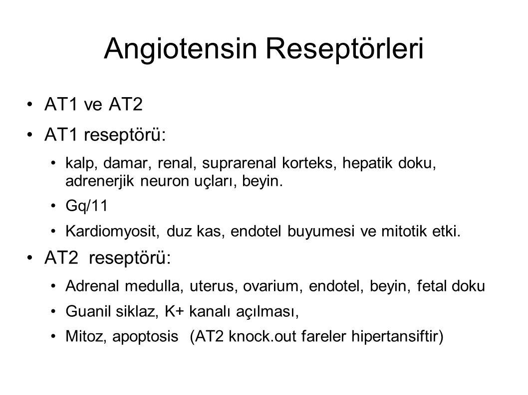 Angiotensin Reseptörleri AT1 ve AT2 AT1 reseptörü: kalp, damar, renal, suprarenal korteks, hepatik doku, adrenerjik neuron uçları, beyin.