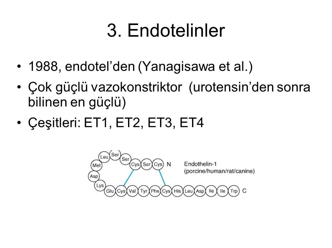 3. Endotelinler 1988, endotel'den (Yanagisawa et al.) Çok güçlü vazokonstriktor (urotensin'den sonra bilinen en güçlü) Çeşitleri: ET1, ET2, ET3, ET4