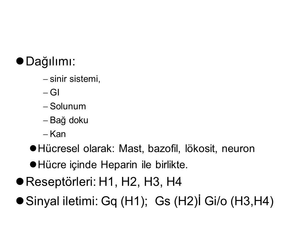 Dağılımı:  sinir sistemi,  GI  Solunum  Bağ doku  Kan Hücresel olarak: Mast, bazofil, lökosit, neuron Hücre içinde Heparin ile birlikte. Reseptör