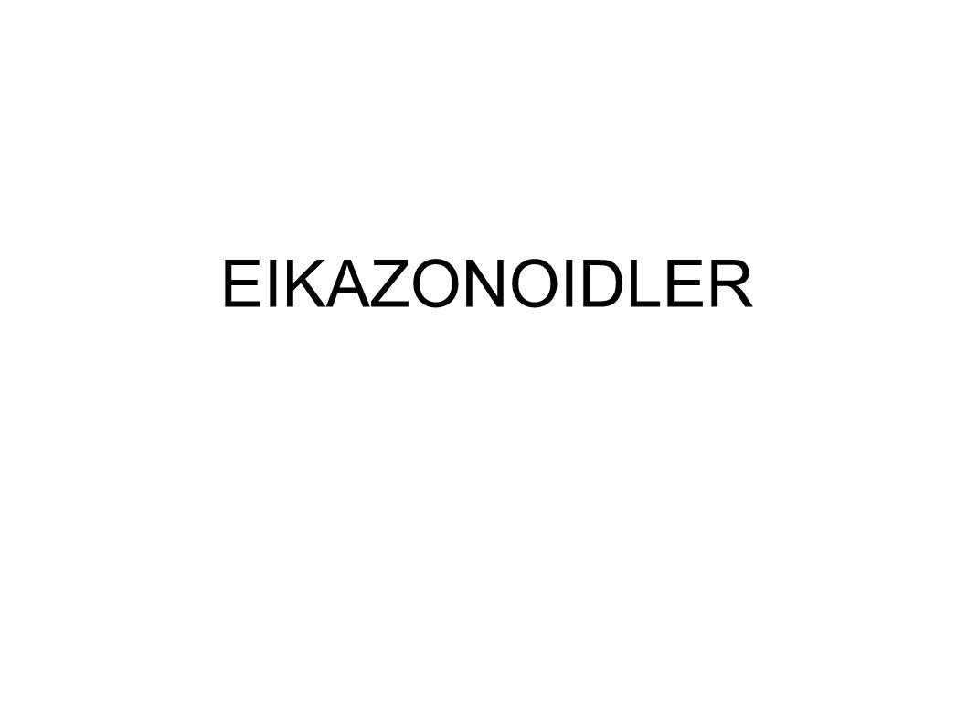 EIKAZONOIDLER