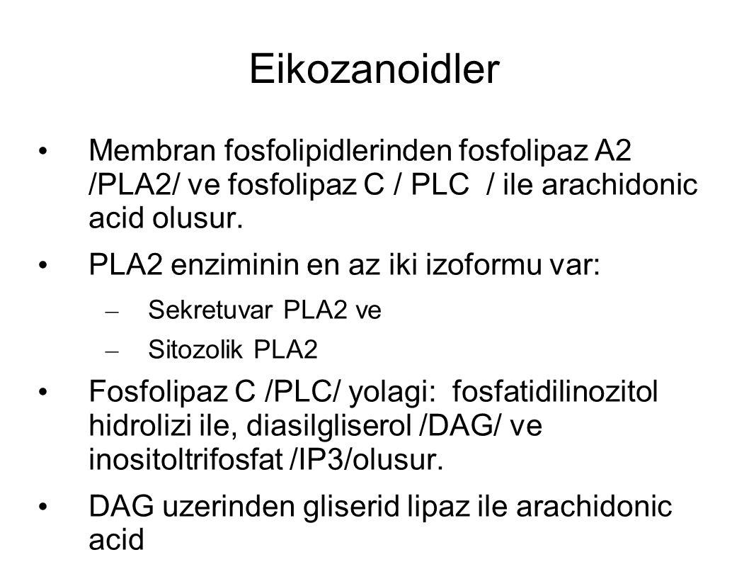 Eikozanoidler Membran fosfolipidlerinden fosfolipaz A2 /PLA2/ ve fosfolipaz C / PLC / ile arachidonic acid olusur. PLA2 enziminin en az iki izoformu v