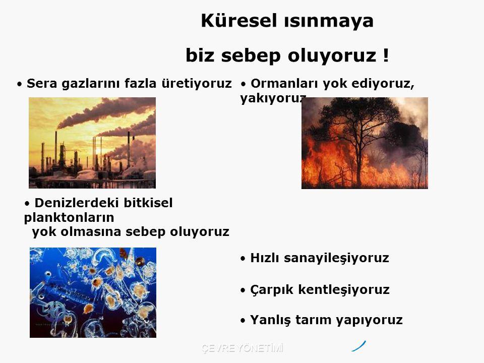 Sera gazlarını fazla üretiyoruz Ormanları yok ediyoruz, yakıyoruz. Çarpık kentleşiyoruz Hızlı sanayileşiyoruz Denizlerdeki bitkisel planktonların yok