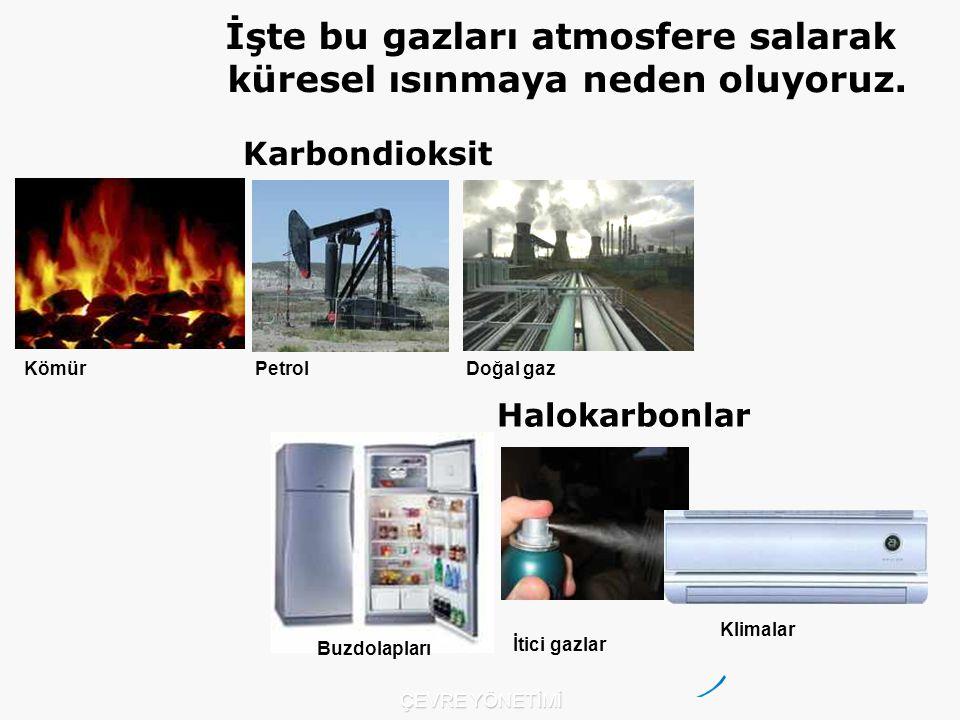 Kömür PetrolDoğal gaz Karbondioksit Halokarbonlar Buzdolapları İtici gazlar Klimalar İşte bu gazları atmosfere salarak küresel ısınmaya neden oluyoruz.