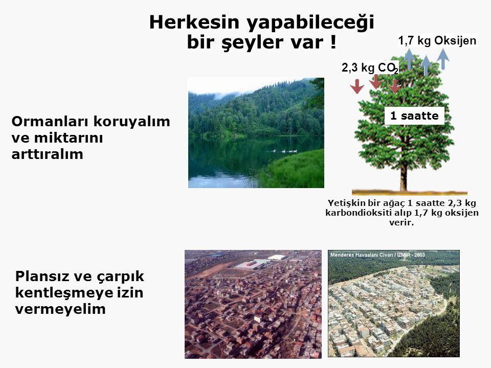 Ormanları koruyalım ve miktarını arttıralım Plansız ve çarpık kentleşmeye izin vermeyelim 1,7 kg Oksijen 2,3 kg CO 2 1 saatte Yetişkin bir ağaç 1 saatte 2,3 kg karbondioksiti alıp 1,7 kg oksijen verir.