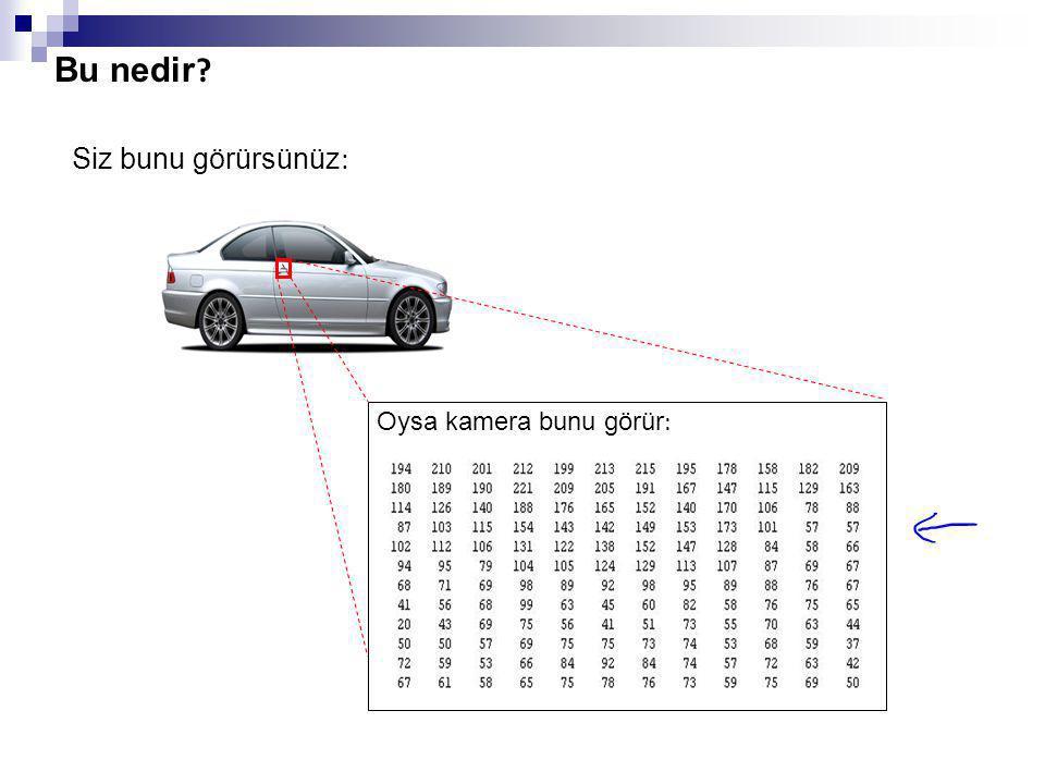 Bilgisayarlı görü : Car detection Testing: Bu nedir ? Araba değil Arabalar