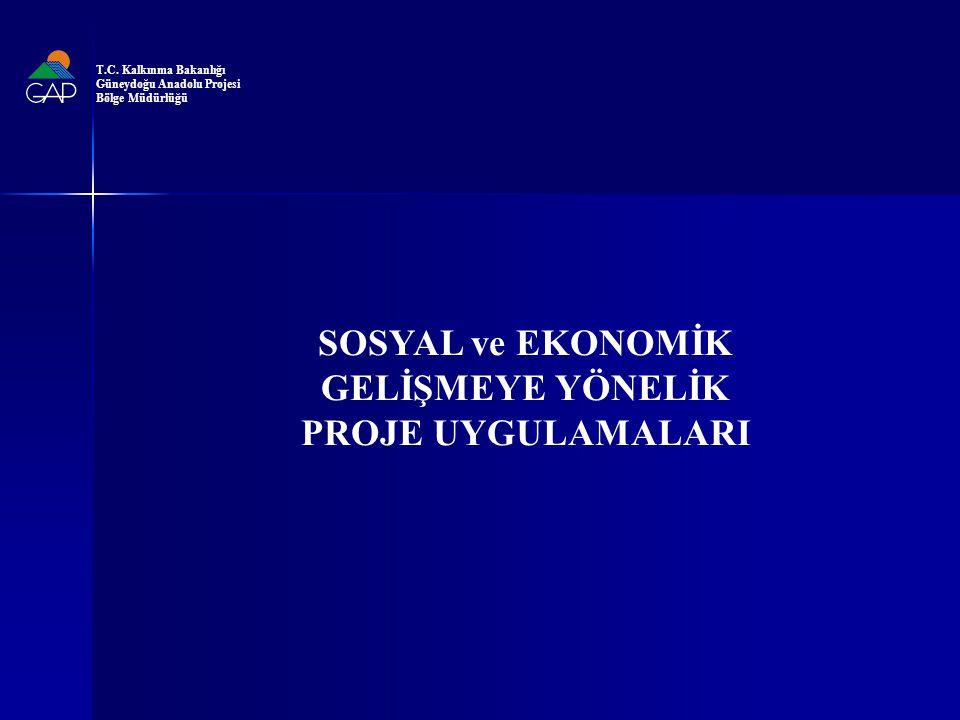 SOSYAL ve EKONOMİK GELİŞMEYE YÖNELİK PROJE UYGULAMALARI T.C.