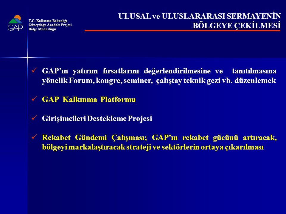 GAP'ın yatırım fırsatlarını değerlendirilmesine ve tanıtılmasına yönelik Forum, kongre, seminer, çalıştay teknik gezi vb.