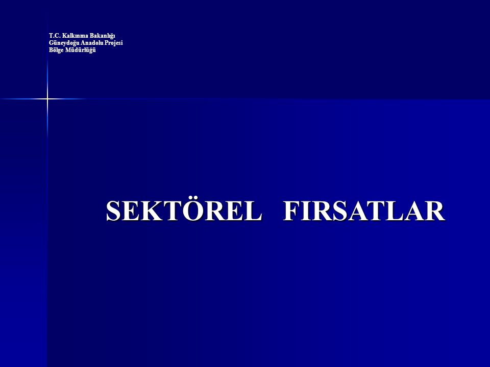 SEKTÖREL FIRSATLAR T.C. Kalkınma Bakanlığı Güneydoğu Anadolu Projesi Bölge Müdürlüğü