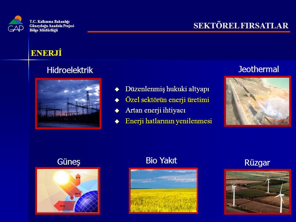 SEKTÖREL FIRSATLAR  Düzenlenmiş hukuki altyapı  Özel sektörün enerji üretimi  Artan enerji ihtiyacı  Enerji hatlarının yenilenmesi Hidroelektrik Jeothermal Güneş Bio Yakıt Rüzgar ENERJİ T.C.