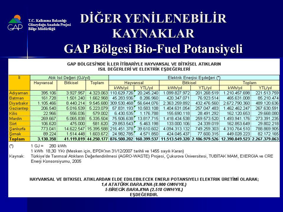 DİĞER YENİLENEBİLİR KAYNAKLAR GAP Bölgesi Bio-Fuel Potansiyeli T.C.