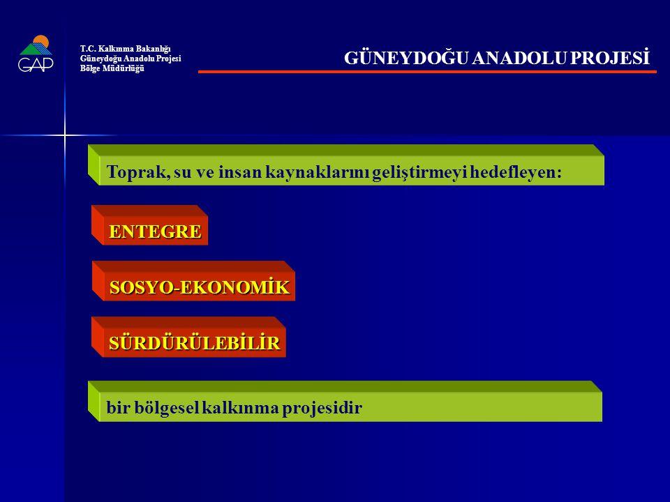 GAP TAMAMLANDIĞINDA BİTKİSEL ÜRETİM PROJEKSİYONU (GAP/TÜRKİYE %) T.C.