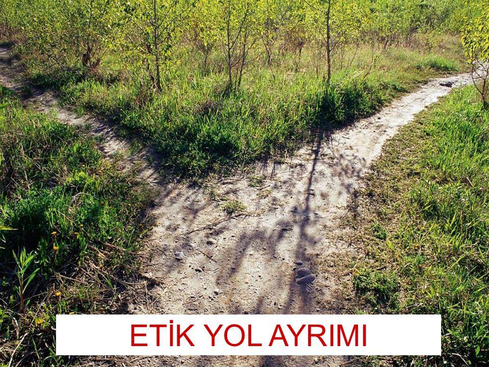 1 Kamu Görevlileri Etik Kurulu The Ethical Way ETİK YOL AYRIMI