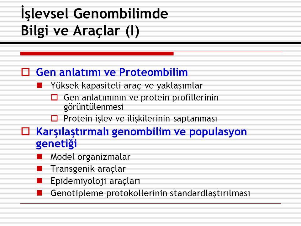 İşlevsel Genombilimde Bilgi ve Araçlar (II)  Yapısal Genombilim Makromoleküllerin yüksek çözünürlükte 3- boyutlu yapılarının saptanmasında yüksek kapasiteli yaklaşımlar  Temel biyolojik işlemlere çokdisiplinli yaklaşımlar İlgili genlerin belirlenmesi ve canlı organizmalardaki biyolojik işlevlerinin anlaşılması için, temel hücre işlemlerinin altında yatan mekanizmaların araştırılması