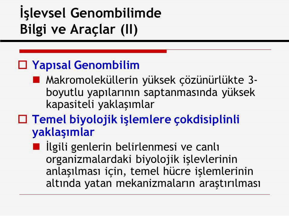 Türk araştırmacılar 6ÇP projelerinden maksimum verimi nasıl sağlayabilir .