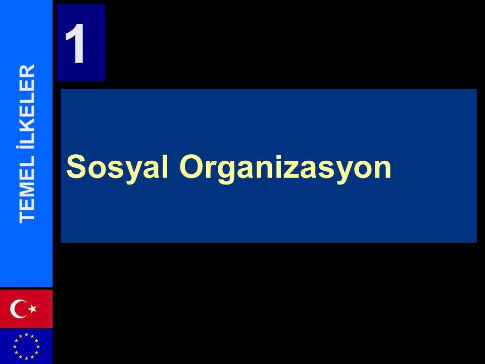 Sosyal Organizasyon TEMEL İLKELER 1