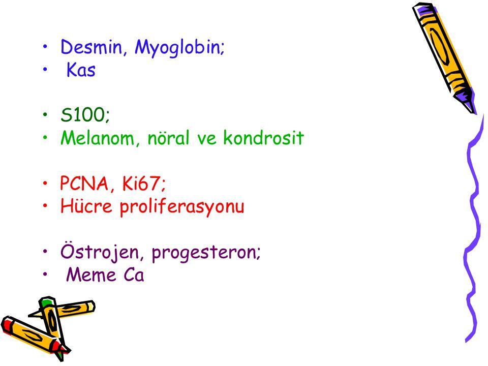 Desmin, Myoglobin; Kas S100; Melanom, nöral ve kondrosit PCNA, Ki67; Hücre proliferasyonu Östrojen, progesteron; Meme Ca
