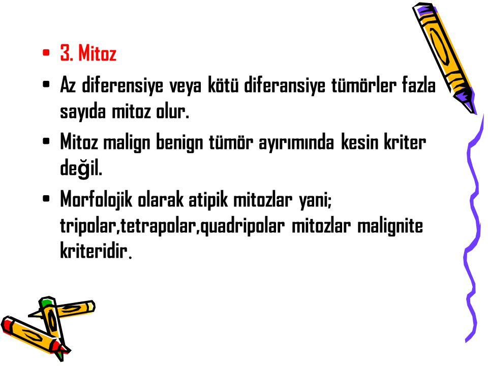 3. Mitoz Az diferensiye veya kötü diferansiye tümörler fazla sayıda mitoz olur. Mitoz malign benign tümör ayırımında kesin kriter de ğ il. Morfolojik